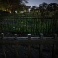 Cemetery_11