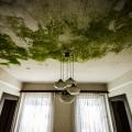Hotel_Atlantis_66