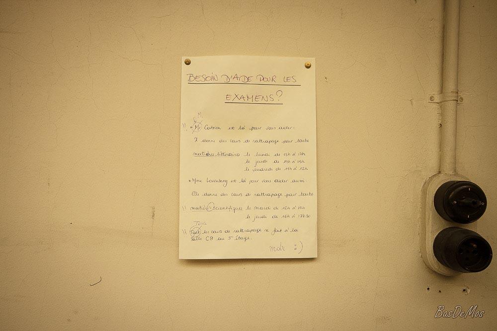 Faculty_11