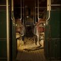 vehicletunnel_07