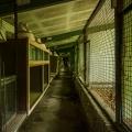 Zoo_03