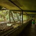 Zoo_05