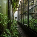 Zoo_41