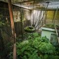 Zoo_43