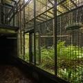 Zoo_47