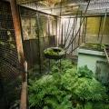 Zoo_49