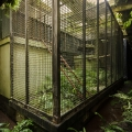 Zoo_50